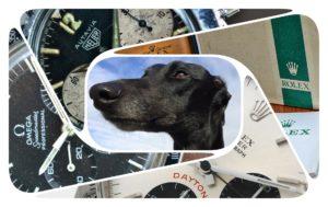 Oldhound Logo
